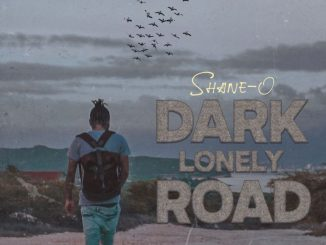 Shane O Dark Lonely Road Mp3 Download