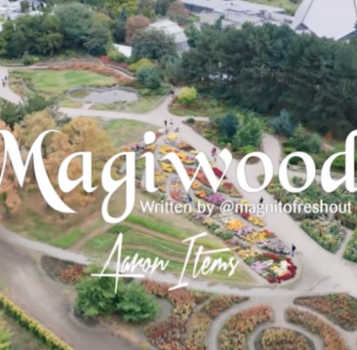 Magnito Magiwood Mp3 Download